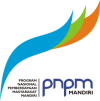 logo-pnpm-mpd